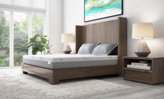 ZBD Bed-CBD products-CBDToday