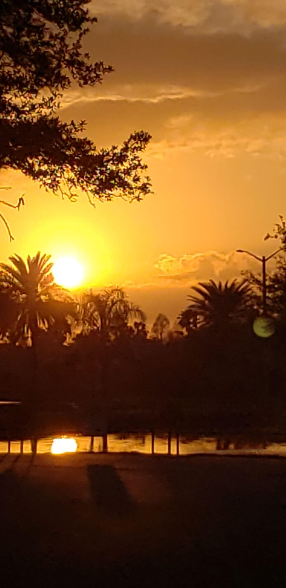 Kiwacz-Sunset