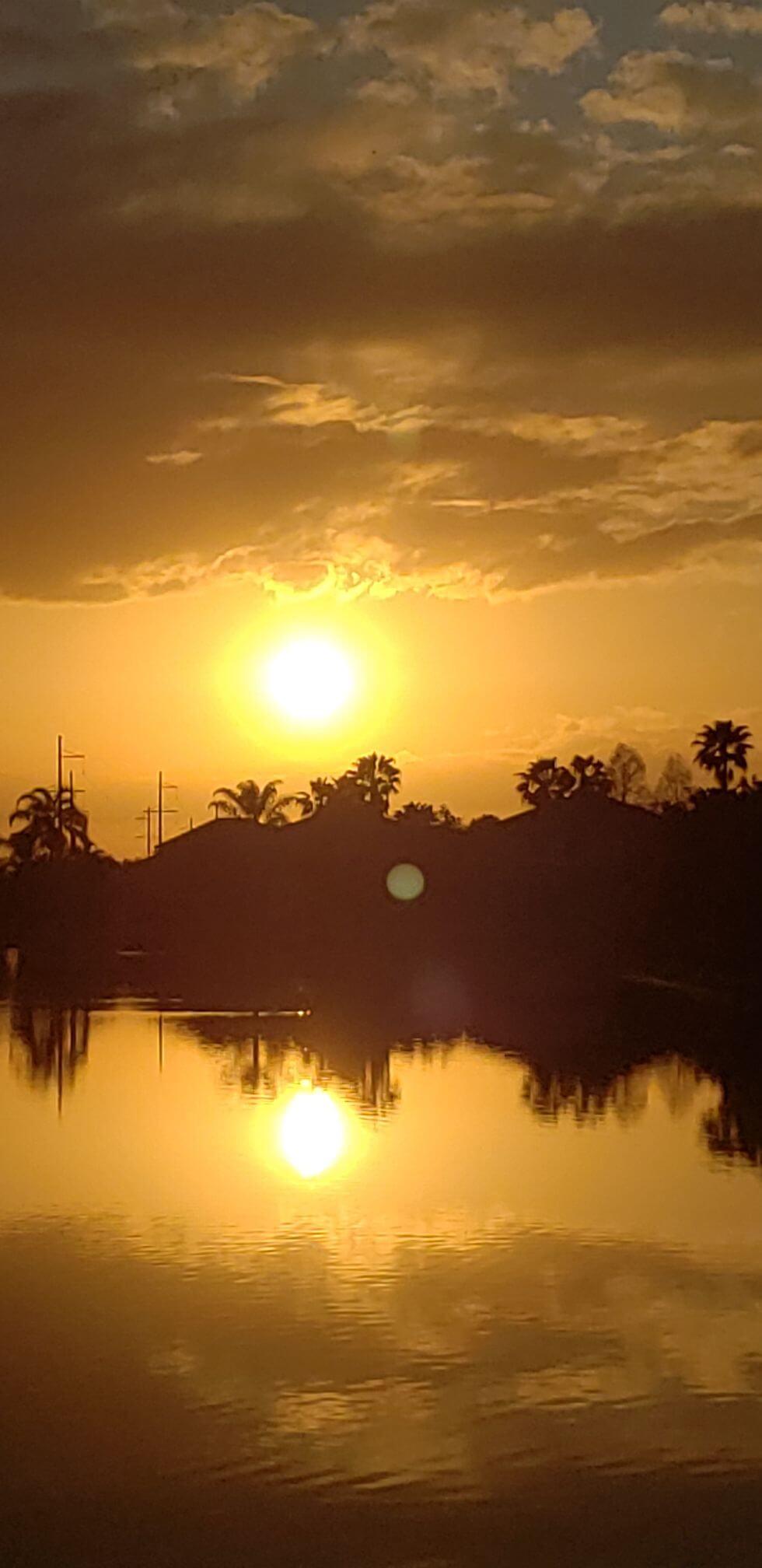 Kiwacz- Sunsets