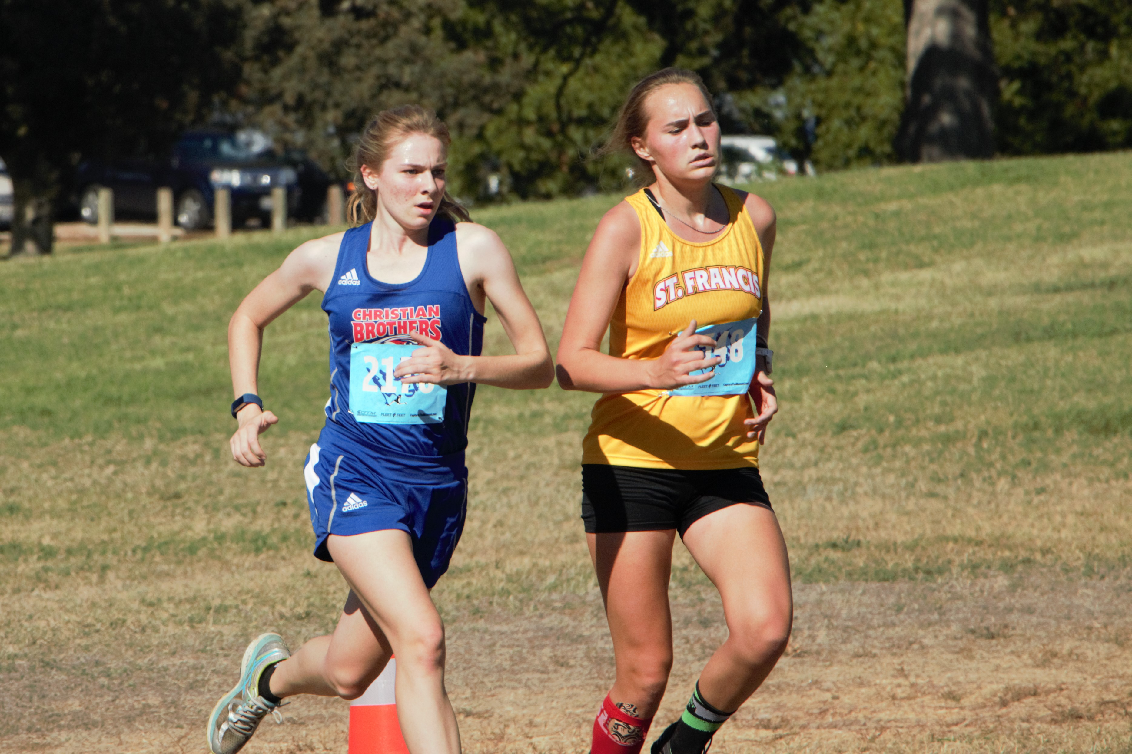 Cross Country Subsections