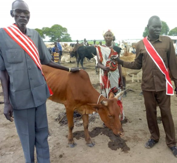 Photo of Sudanese men and women posing with a cow