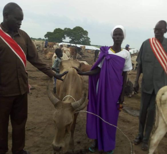 Photo of a Sudanese woman and man posing with a cow