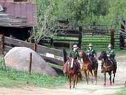 U.S. Border Patrol on horse patrol