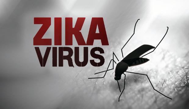 Zika virus_130368