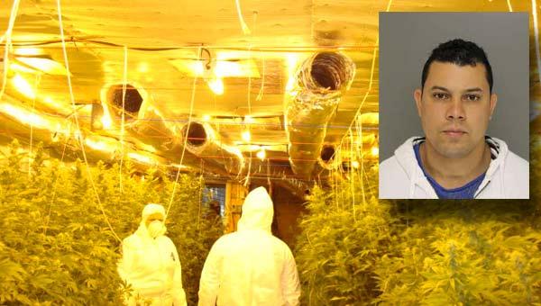 moore-county-marijuana-bust_292828