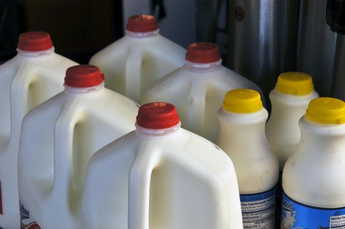 cartons-of-milk_430316