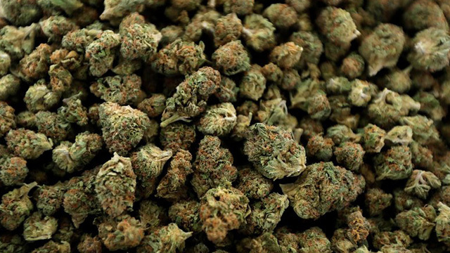 marijuana nugs generic_1547653130590.jpg.jpg