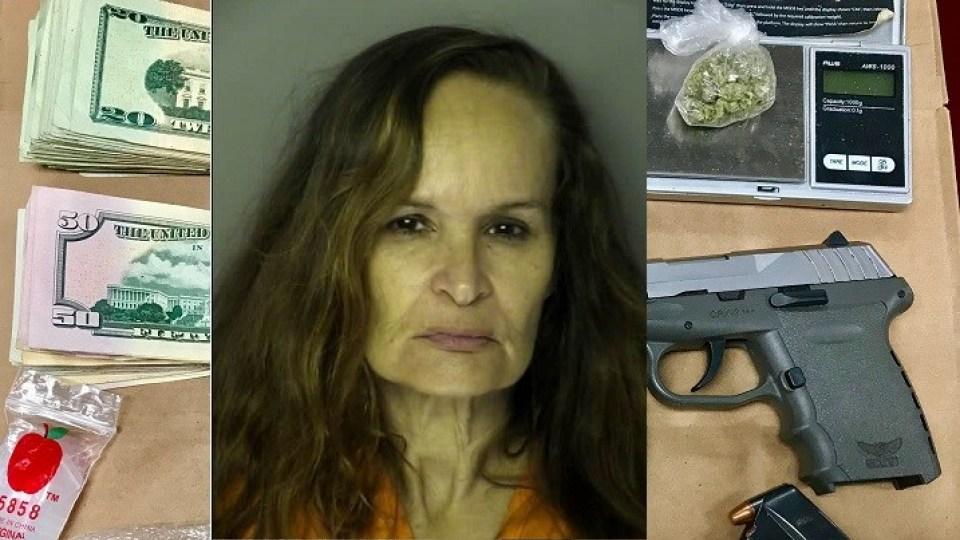 SC woman arrested after police find gun, coke, meth and $3K