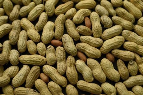 Peanut_202293