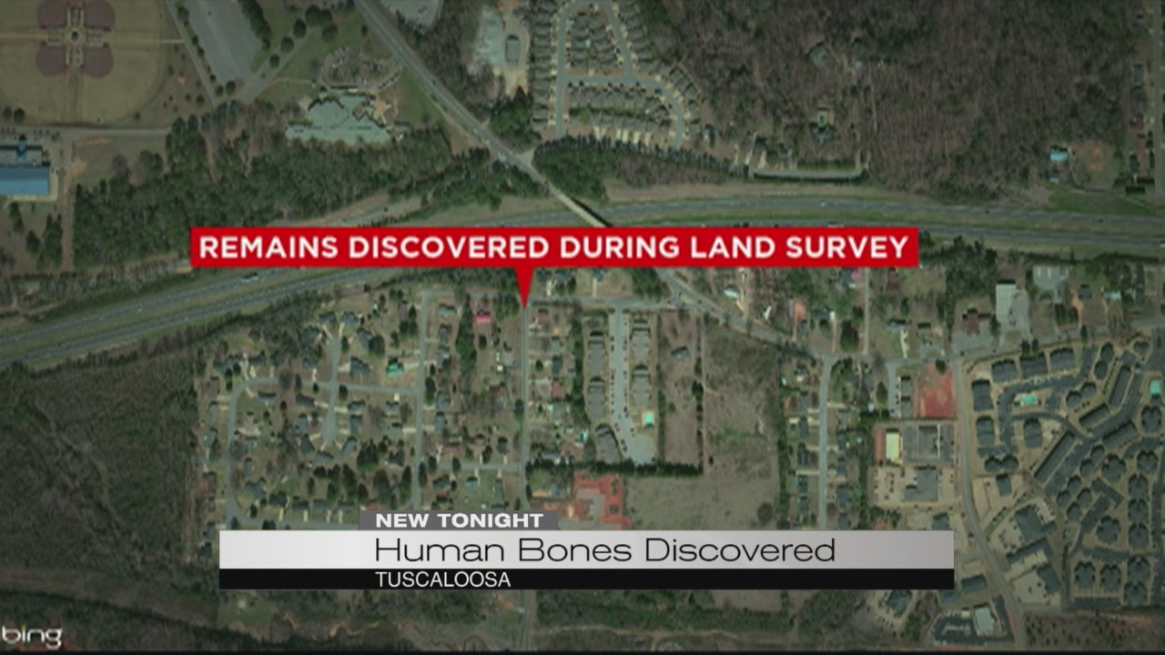 Human bones discovered