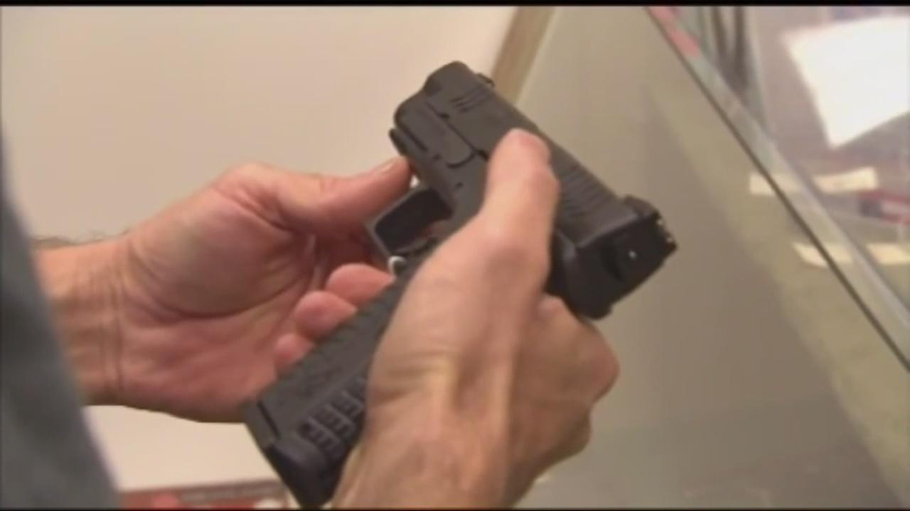 Gun Permit_257424