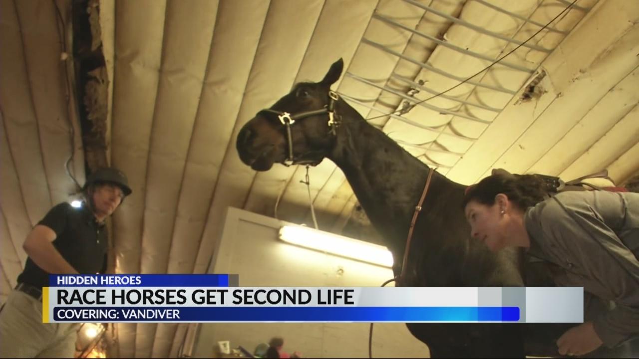 HIDDEN_HEROES__Race_horses_get_a_new_lif_0_20180427141640