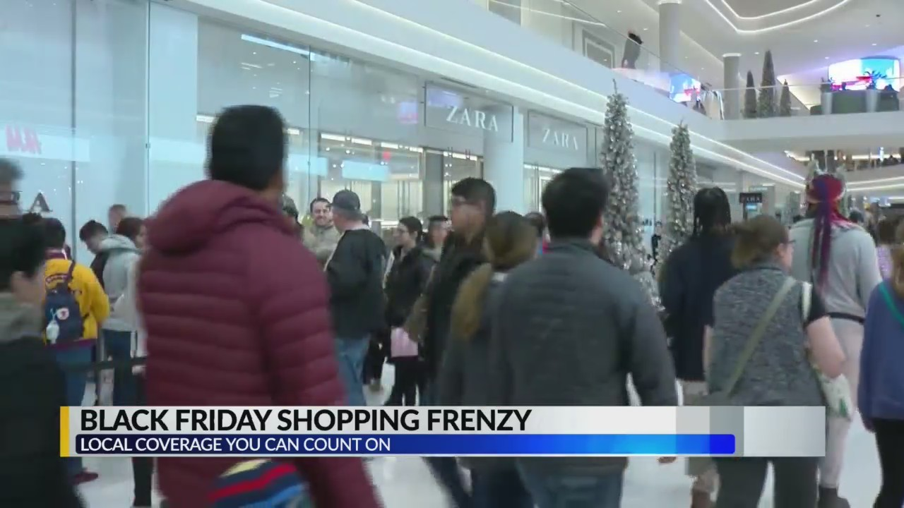 Black Friday shopping frenzy