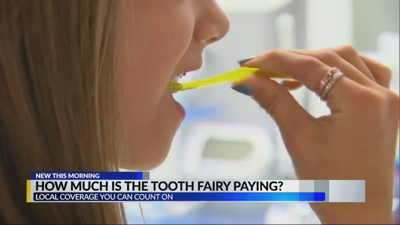 How much is the tooth fair paying?