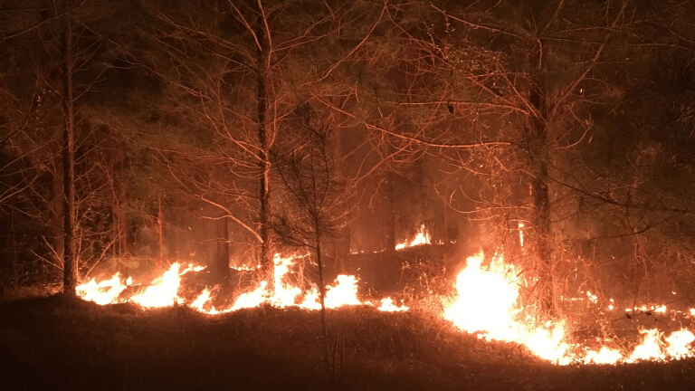 chilton county fire_1554255491265.png.jpg