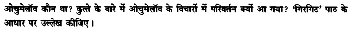 Chapter Wise Important Questions CBSE Class 10 Hindi B - गिरगिट 47