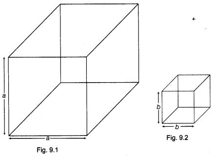 NCERT Class 9 Maths Lab Manual - Verify the Algebraic Identity a³+b³ = (a+b) (a²-ab+b²) 1