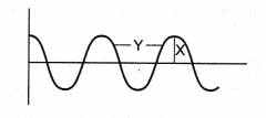 NCERT Class 9 Science Lab Manual - Velocity of a Pulse in Slinky 11