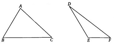 NCERT Solutions for Class 7 Maths Chapter 7 Congruence of Triangles 18