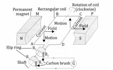 NCERT Solutions for Class 10 Science Chapter 13 Magnetic Effects of Electric Current 11