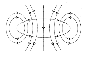 NCERT Solutions for Class 10 Science Chapter 13 Magnetic Effects of Electric Current 3