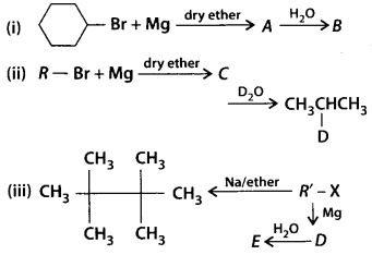 NCERT Solutions for Class 12 Chemistry Chapter 10 Haloalkanes and Haloarenes 13