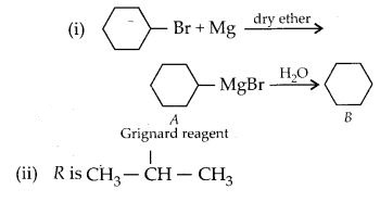 NCERT Solutions for Class 12 Chemistry Chapter 10 Haloalkanes and Haloarenes 14