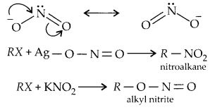 NCERT Solutions for Class 12 Chemistry Chapter 10 Haloalkanes and Haloarenes 29