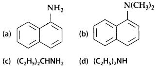 NCERT Solutions for Class 12 Chemistry Chapter 13 Amines 1