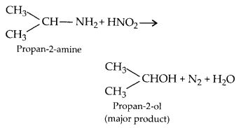 NCERT Solutions for Class 12 Chemistry Chapter 13 Amines 11