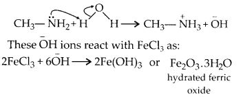 NCERT Solutions for Class 12 Chemistry Chapter 13 Amines 18