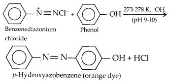 NCERT Solutions for Class 12 Chemistry Chapter 13 Amines 32