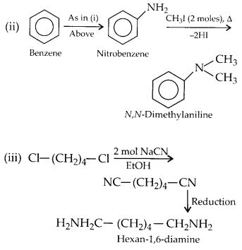 NCERT Solutions for Class 12 Chemistry Chapter 13 Amines 5
