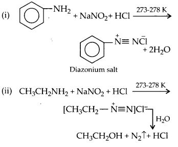 NCERT Solutions for Class 12 Chemistry Chapter 13 Amines 58