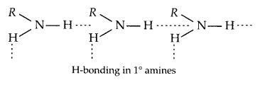 NCERT Solutions for Class 12 Chemistry Chapter 13 Amines 60
