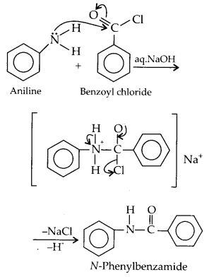 NCERT Solutions for Class 12 Chemistry Chapter 13 Amines 9