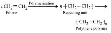 NCERT Solutions for Class 12 Chemistry Chapter 15 Polymers 3