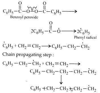 NCERT Solutions for Class 12 Chemistry Chapter 15 Polymers 6