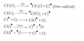 NCERT Solutions for Class 12 Chemistry Chapter 7 The p-Block Elements 30