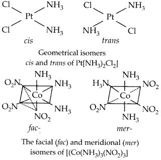 NCERT Solutions for Class 12 Chemistry Chapter 9 Coordination Compounds 18