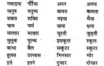 NCERT Solutions for Class 8 Hindi Vasant Chapter 18 टोपी 1