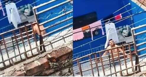 Video: Graban a hombre golpeando y electrocutando a su perro, exigen justicia