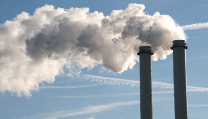The true cost of carbon pollution