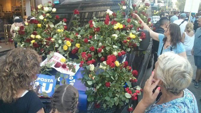 Resultat d'imatges de Fotos mossos flors