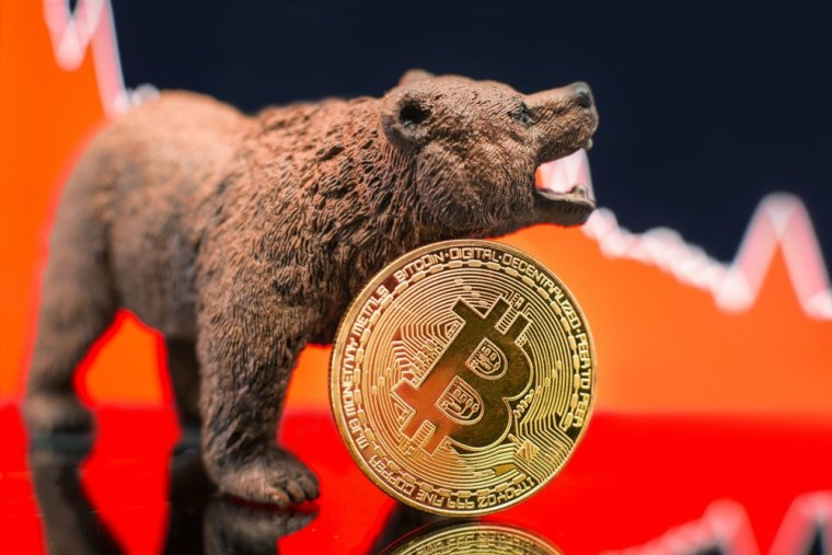 bitcoin price bear