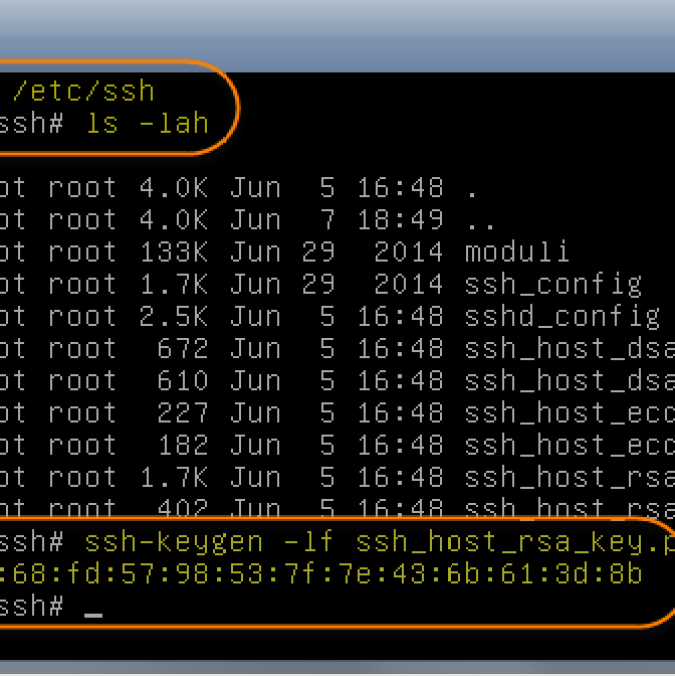 VPS Remote Management using SSH Terminal