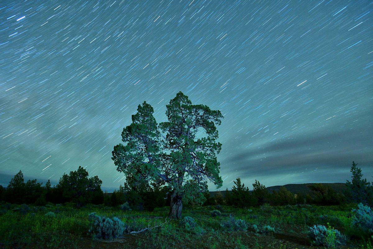 Private Night Sky Photo Tours