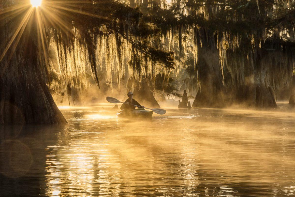 Ancient Cypress Swamps Photo Tour 2021