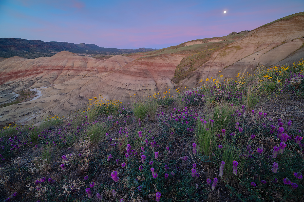 Painted Hills & Blue Basin Photography Outing