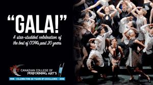 CCPA gala web banner